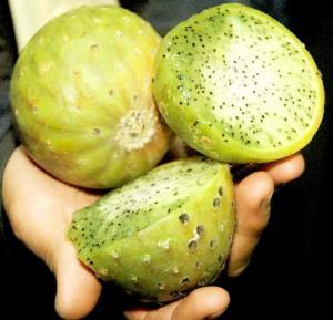 Frutos de Sanky Peruano